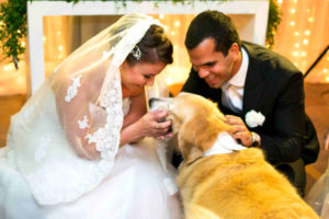 Perros en bodas en el altar