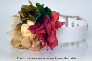 Bouquet de flores preservadas artesanal