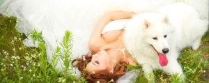 Boda-Noiva-Perro
