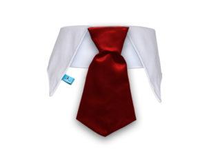 Cuello con corbata para perros color rojo