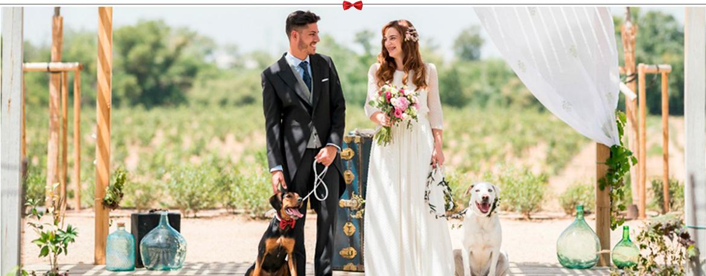 Boutique de lujo para perros